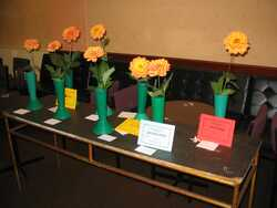 Grow and Show a Dahlia Competition entries
