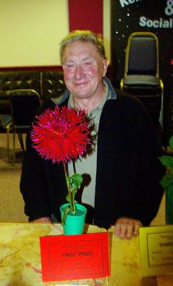 WInner of fimbriated dahlia class